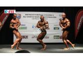 E-fit.cz MM 2011 semifinále do 90 kg